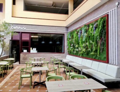 Cafetería Morrojable
